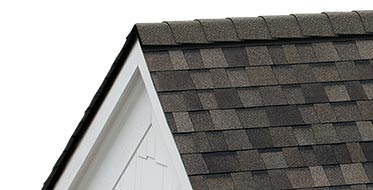 Section of roof showing detail of asphalt shingles