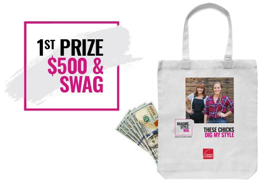 1st Prize $500 and SWAG
